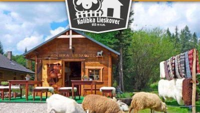letak_KOLIBKA-page-10