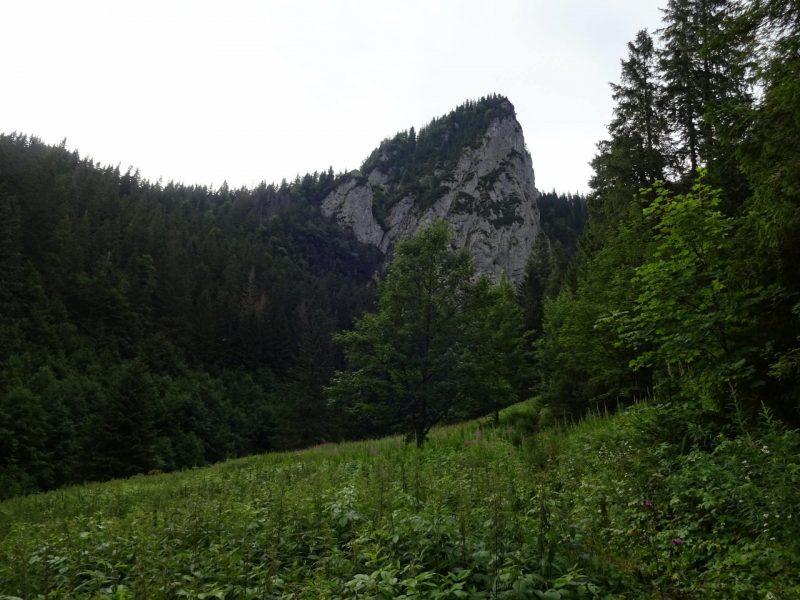 monkova2