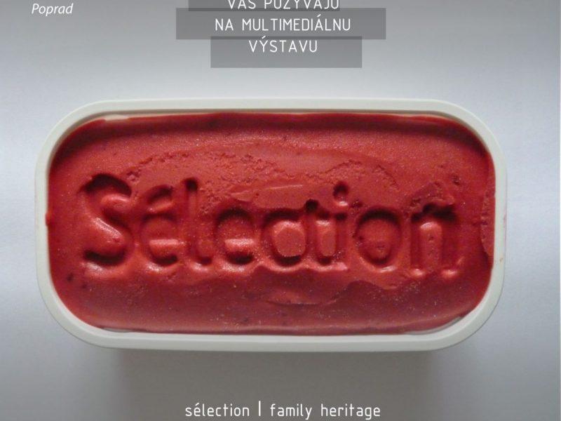 Výstava_Sélection_Výber_Marek_Ružinský_Podtatranské_múzeum_v_Poprade