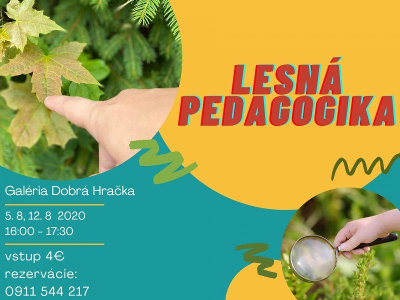 Lesná pedagogika 1-page-001