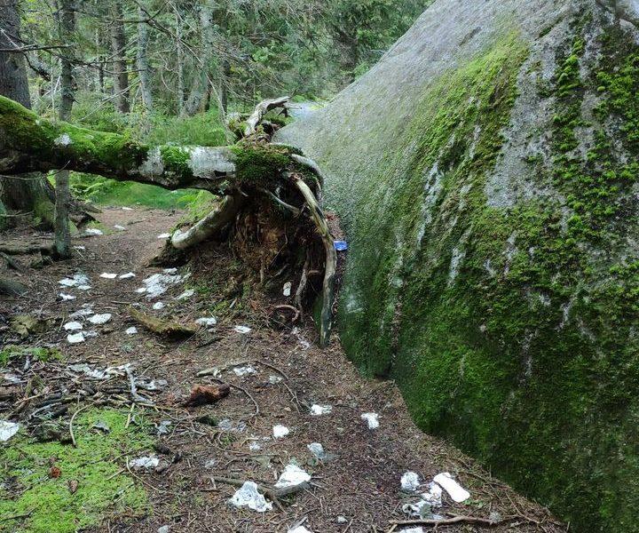 prirodny_zachod_za skalo
