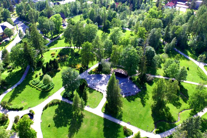 park tatranska lomnica vysoke tatry strom